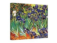 Irises in the Garden by van Gogh (3 Sizes)