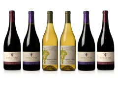 Hangtime Wines Sample Pack (6)