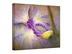 Lifegiver Wrapped Canvas (3 Sizes)