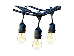 Brightech 48' Ambience Pro Waterproof Outdoor String Lights with Hanging Sockets
