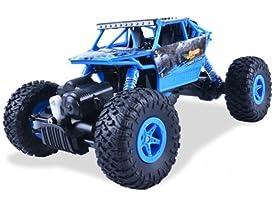 Rock Climber 2.4G 4 Wheel Truck