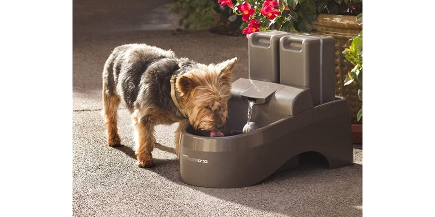 drinkwell indoor outdoor dog fountain   home amp kitchen