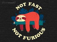 Not Fast, Not Furious Remix