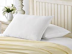 2-Pack 550 Fill Power Down Blend Pillow