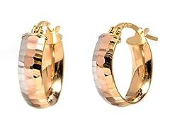 14K Gold Tri-Tone DC Hoop Earring