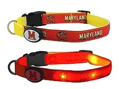 University of Maryland LED Collar - M