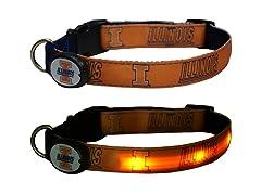 University of Illinois LED Collar - Med