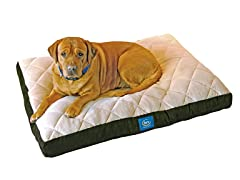 Serta Pillowtop Orthopedic Pet Bed-Green-XL