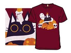 Spooky Pumpkitten