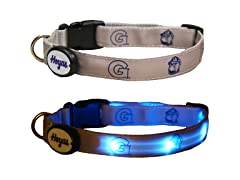 Georgetown Univerisity LED Collar - Med