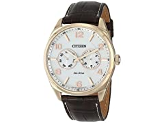 Citizen Men's Eco-Drive Gold-Tone Watch