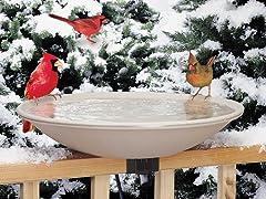 Heated Bird Bath with Mounting Bracket