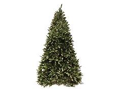 Douglas Fir Tree 12' Prelit Clear