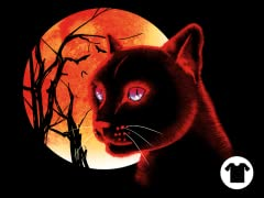 The Black Cat (II)