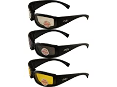 Stray Cats Men's Motorcycle Glasses (3 Pack)