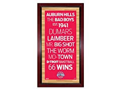 "Detroit Pistons 16"" x 32"" Sign"