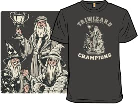 Triwizard Tournament Champs