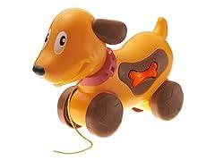 Musical Doggy