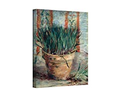 Chives in Flowerpot