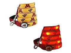 University of Minnesota LED - Leash 6'