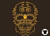 Adventure Skull!