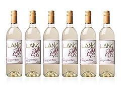 Sauvignon Blanc (6)