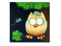 Hootie the Cutie Owl 14x14 Canvas