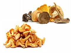 Mikuni Wild Harvest Mikuni Mushrooms