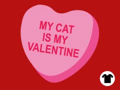 My Cat is my Valentine.
