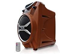 300W Bluetooth Portable PA System