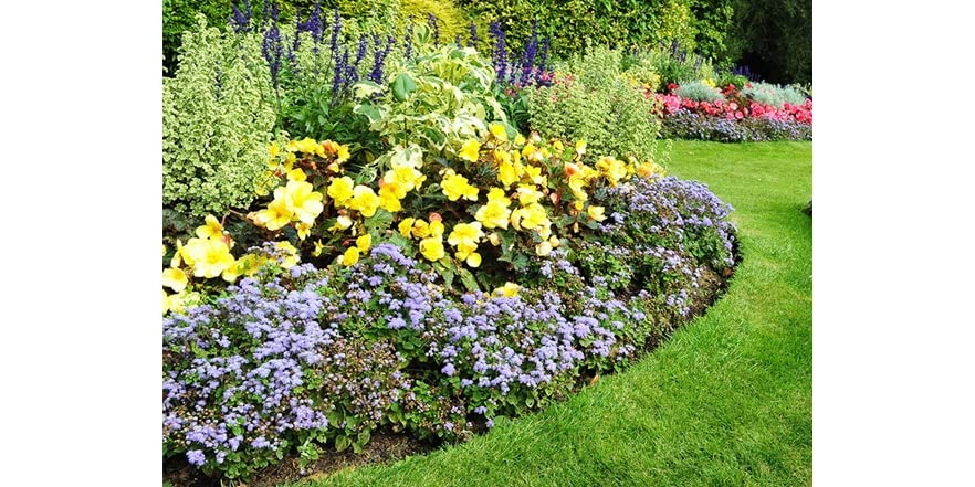 Roll Out Gardens : Sunburst flower roll out garden