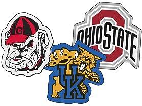 NCAA Mascot Area Rugs