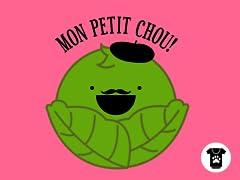 Mon Petit Chou Pet Hoodie