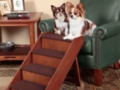 Large PupSTEP™ Wood Stairs