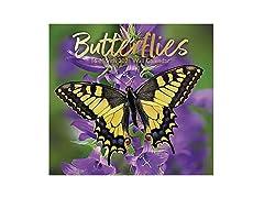 2021 Full-Size Wall Calendar Butterflies