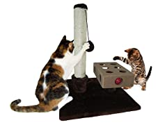 Small Busy Box & Scratch Post