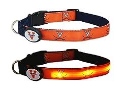 University of Virginia LED Collar - L