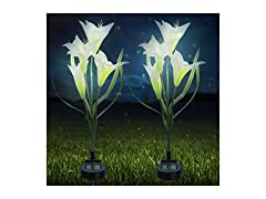 Outdoor Solar Garden Flower Stake Lights