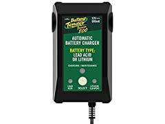 12 volts at 800 mA 220199 Output Battery Charger
