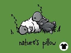 Nature's Pillow