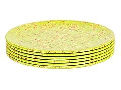 """Kiwi 9"""" Salad Plates S/6"""