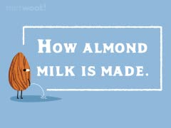 How Almond Milk Is Made