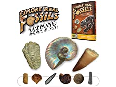 Discover with Dr. Cool Ultimate 15 REAL Fossils Kit