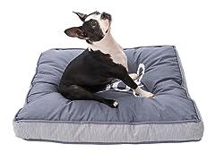 Boyo Woof Printed Pet Bed - Blue