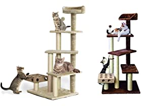 Play Stairs with Cat-IQ Busy Box