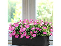 Flower Seed Planter Box Kits