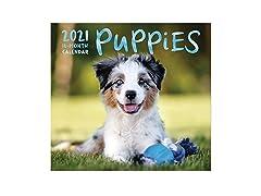 Paper Craft 2021 Wall Calendar Puppies