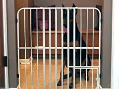 Extra Tall Metal Expandable Pet Gate