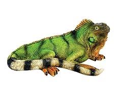 Iguana Statue, Small