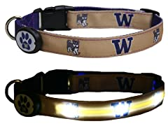 University of Washington LED Collar - L